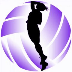 Premier Girls Volleyball Club